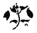 Sample of butterfly monogram.