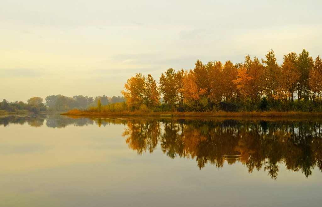 Picture of an Autumn Landscape - Public Domain Picture